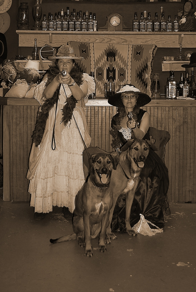 Saloon photo of The Ridgeback Gang
