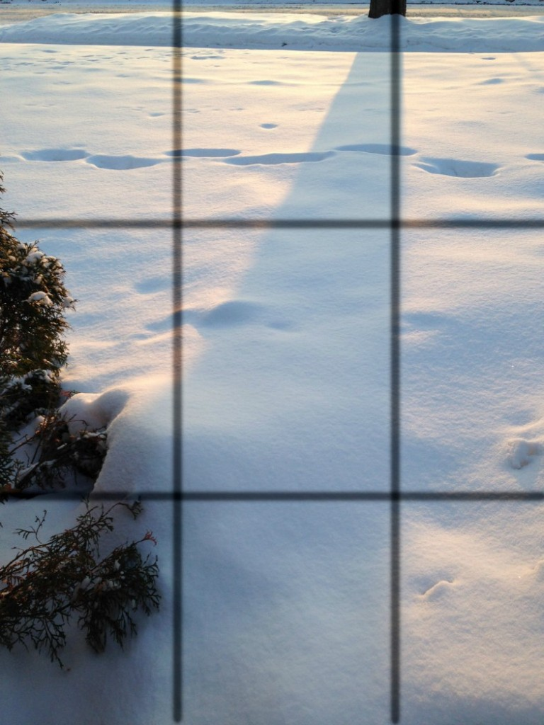 Rule of Thirds grid over photo.