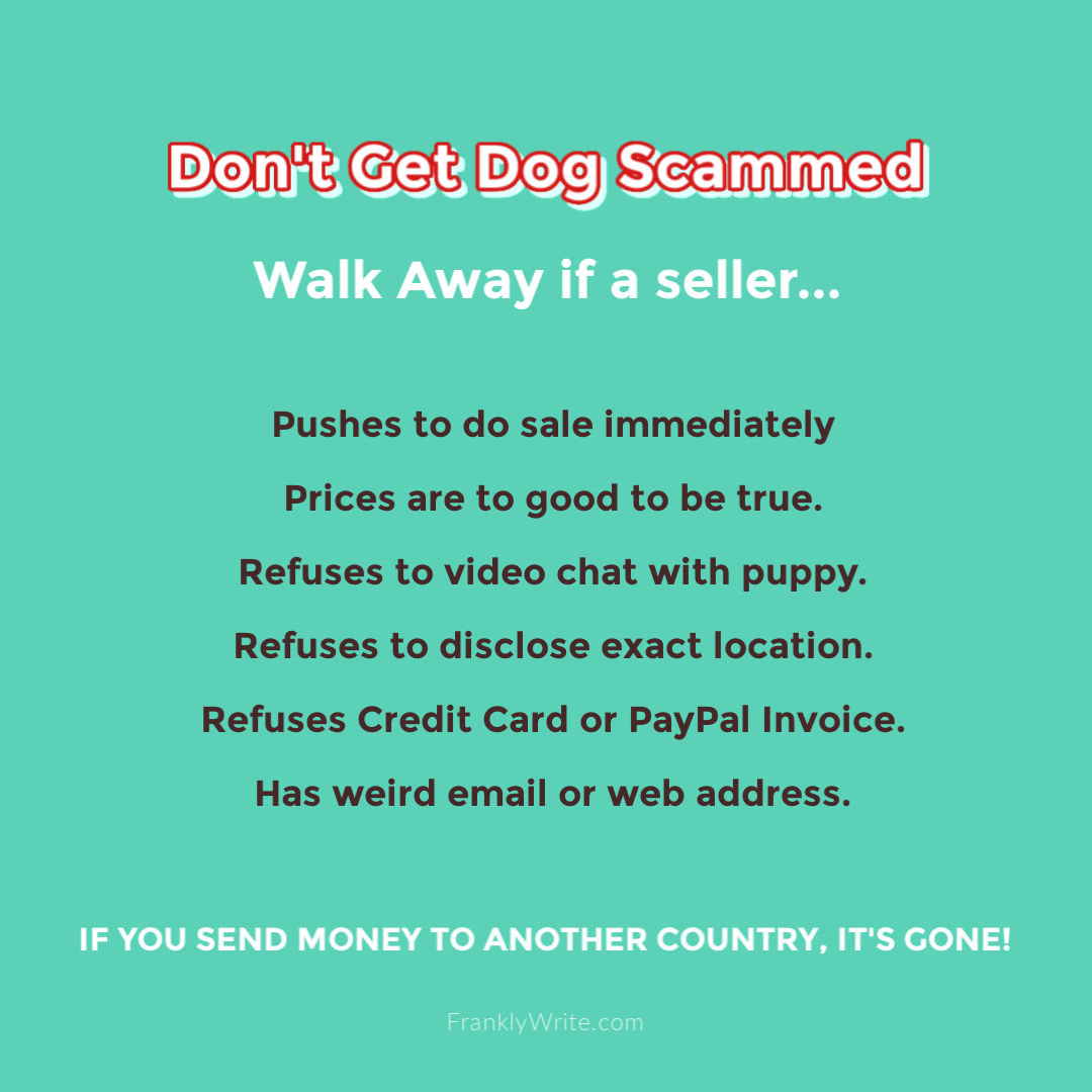 Don't Get Dog Scammed